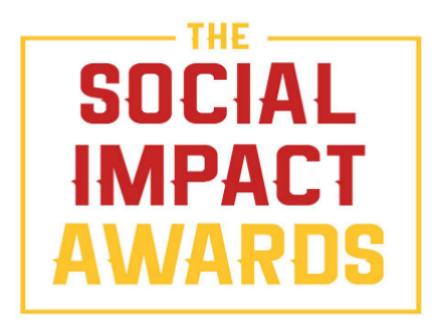 social impact awards 4 - VSM